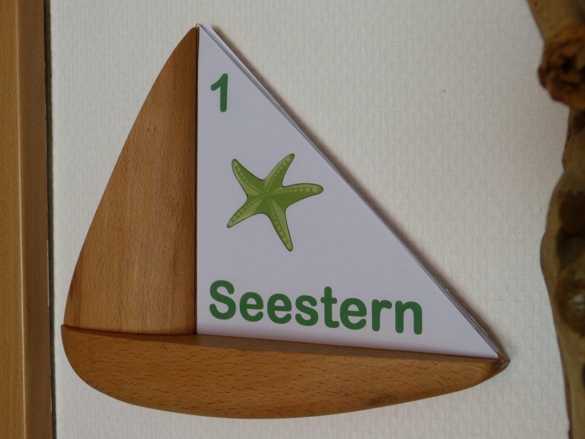 Seestern_Schild